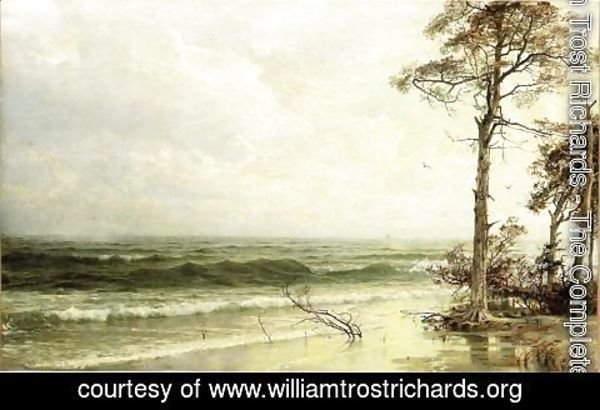 William Trost Richards - Cedars on the Shore Near Atlantic City